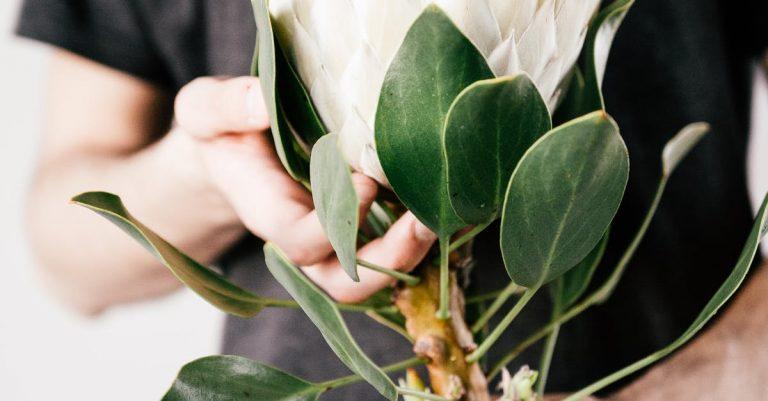 kedai bunga online